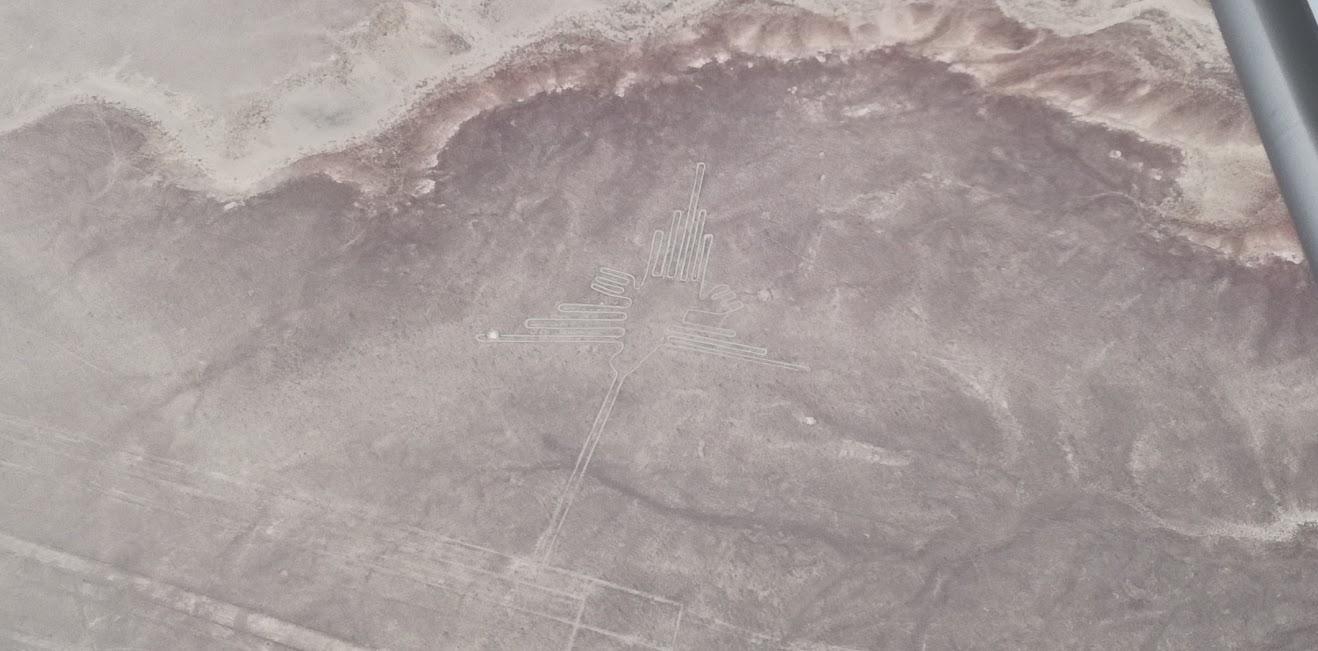 ナスカの地上絵 ハチドリ